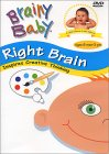 brain development, early childhood development